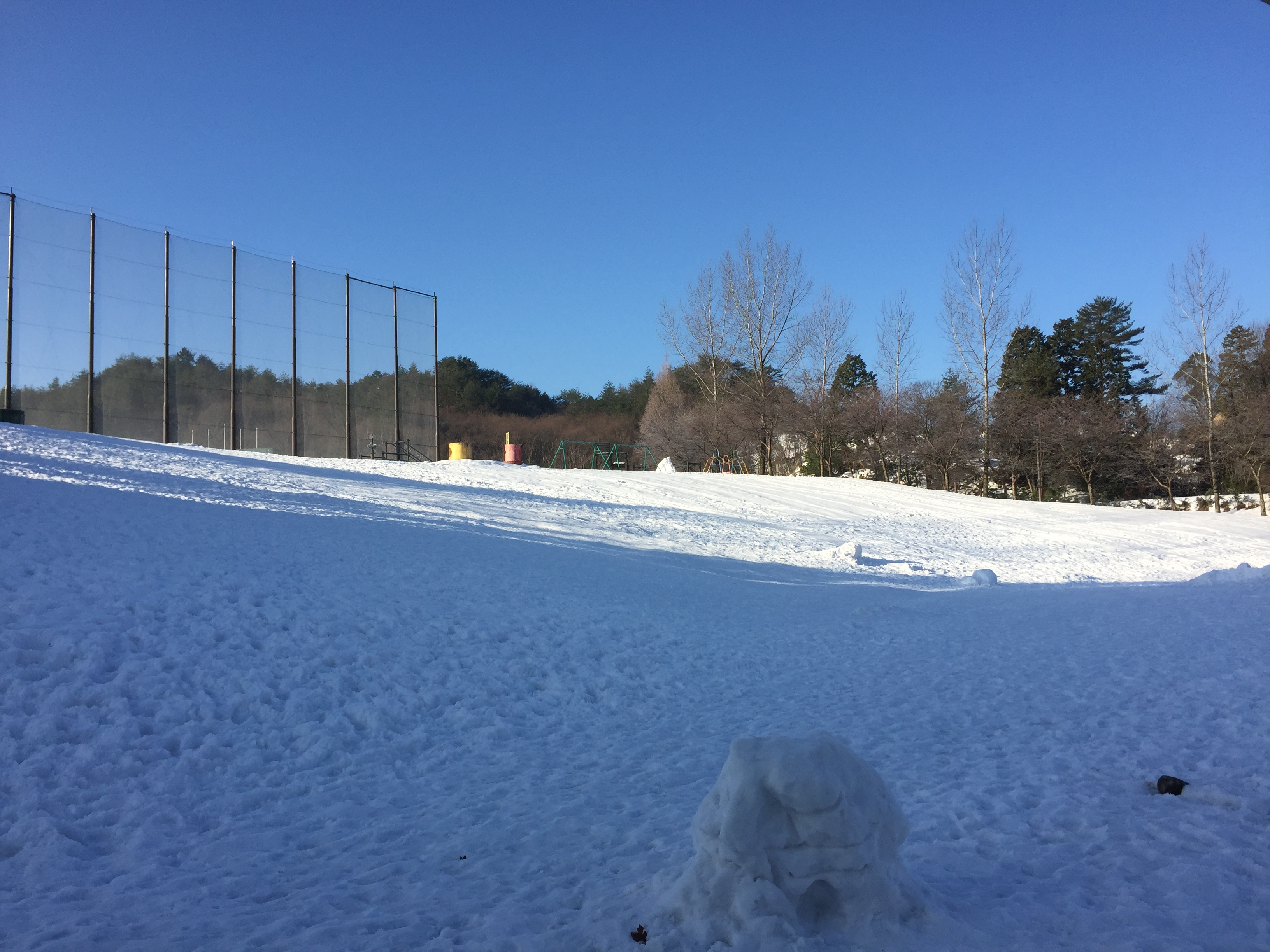 雪1月28日